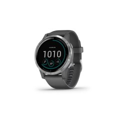 Garmin Vívoactive 4 45mm Shadow Gray with Silver Hardware